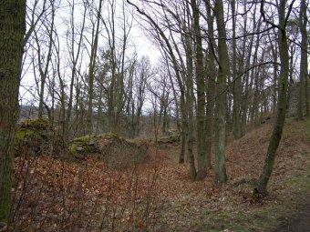 Zřícenina hradu Prácheň u Velkých Hydčic