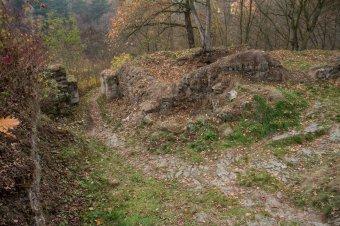 Zřícenina hradu Věžka u Druztové