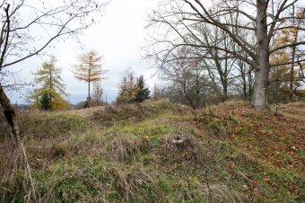Hradiště a mohylové pohřebiště u Bezemína